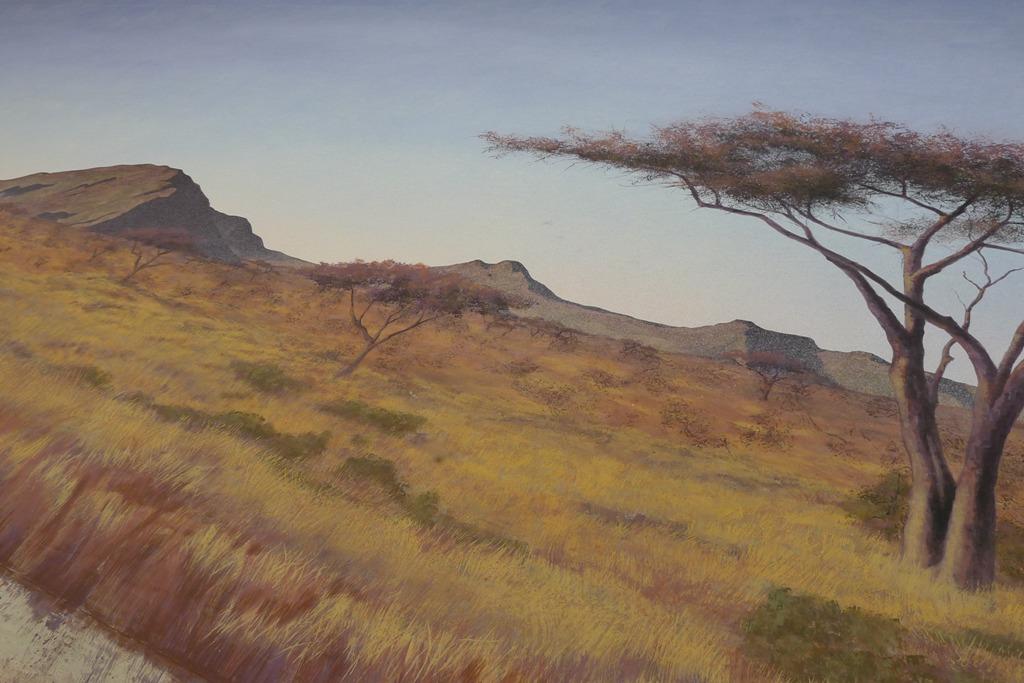 detail of the Serengetti drop. SA Brian Proud